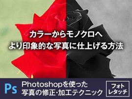 カラーからモノクロへ、より印象的な写真に仕上げる方法